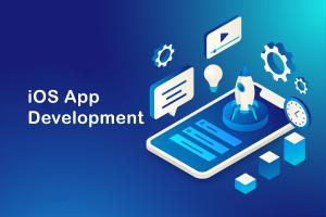iphone app development company usa_Molinatek