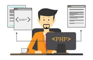 php developer usa molinatek